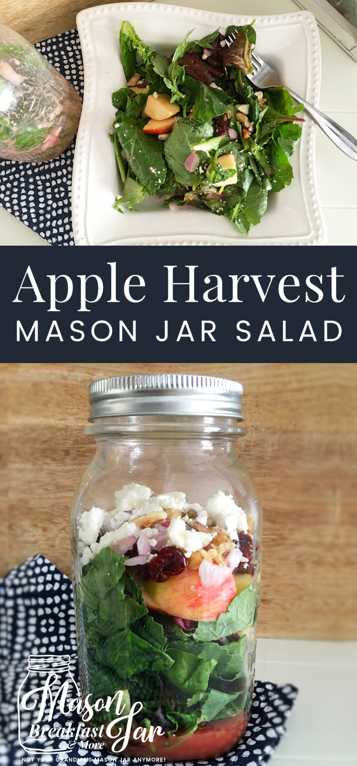 Do you need new Mason jar salad inspiration? This Apple Harvest Mason jar salad recipe contains layers of mixed greens, gala apple, red onion, dried cherries or cranberries, walnuts and feta cheese then topped with a light, delicious raspberry vinaigrette. This easy and healthy Mason jar meal is perfect when you need to grab and go. Give this Ball Mason jar salad a try! #masonjarideas #masonjarsalad #masonjarmeals